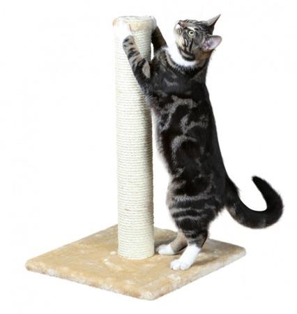 Drapak dla kota ze słupkiem - beż