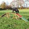 Drewniana kładka treningowa dla psów